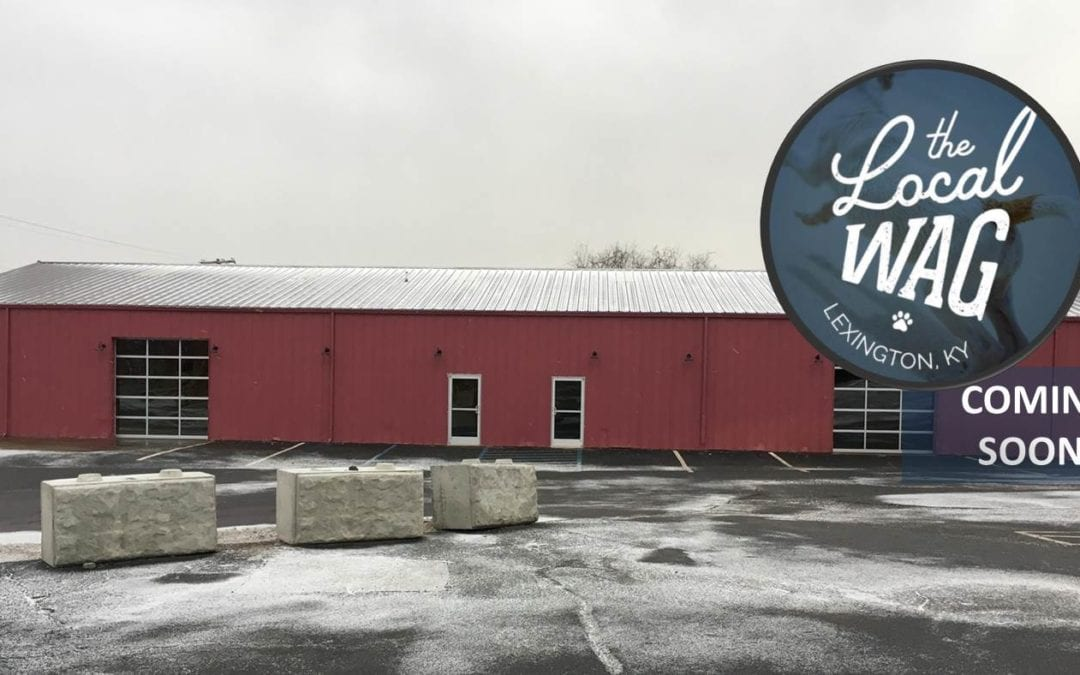 NAI Isaac Brings The Local Wag to Distillery District Location in Lexington, Kentucky